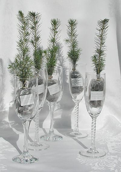 2010treeglassart